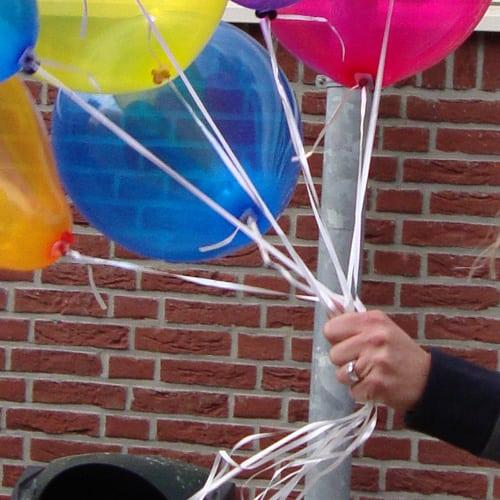 ballonlintjes (100)