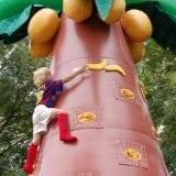 bananen-klimboom-1-berkum-vierkant