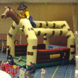 cowboy-2-500