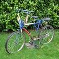 duo-fiets-500