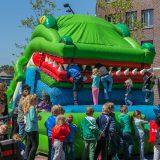 krokodil-8