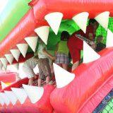 krokodil-9