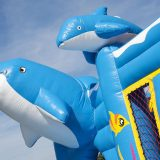 multiplay-dolfijn-3