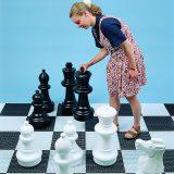 reuzen-schaakspel-4