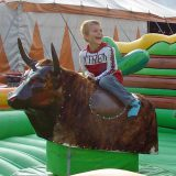 rodeo-stier-3