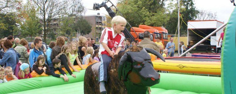 Rodeostier huren in Dedemsvaart Hardenberg