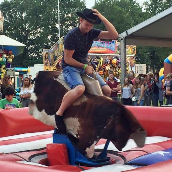 Rodeo stieren