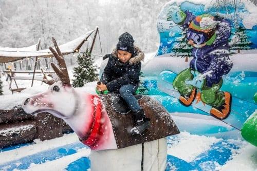 winterattractie huren rodeo rendier